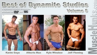 Preview Best of Dynamite Studios Vol. 5